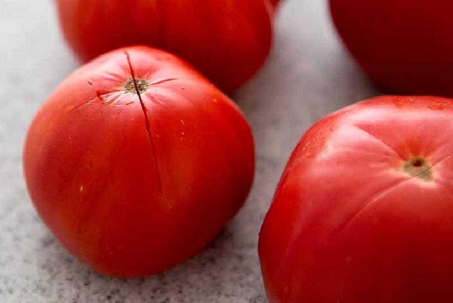 Capelli d'angelo con pomodori e gamberi - Step 1 - Immagine 1