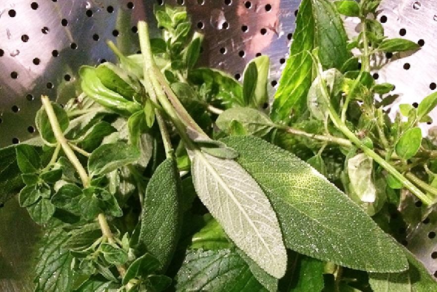Trecce al pesto aromatico, pomodori e zucchine - Step 1 - Immagine 1