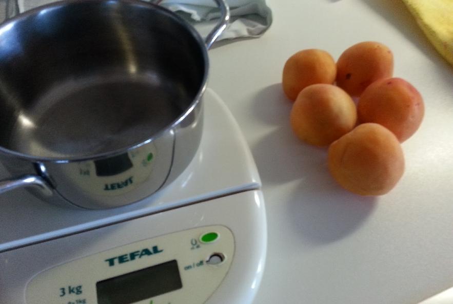 Filetto in crosta su crema di albicocche - Step 1 - Immagine 1