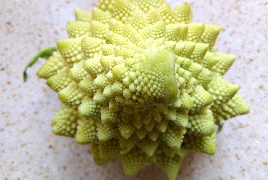 Rigatoni con trota salmonata e broccolo romanesco - Step 2 - Immagine 1