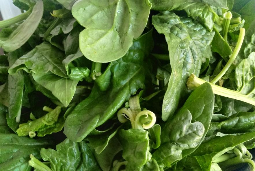 Torta salata di pasta brisè con zucca e spinaci - Step 2 - Immagine 1