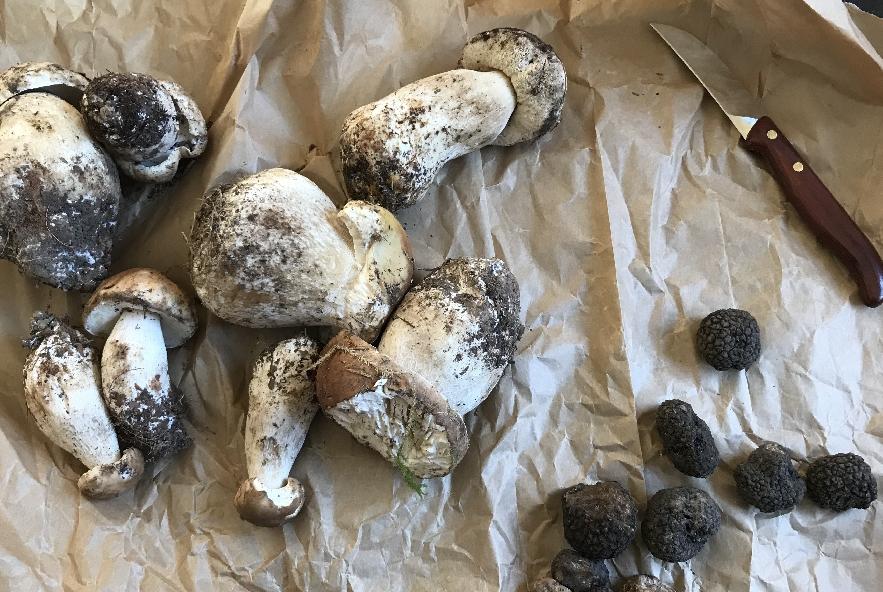Pappardelle funghi porcini e tartufo - Step 2 - Immagine 1