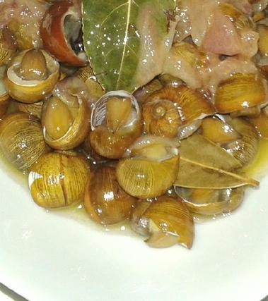 Municeddhi (lumache nere di terra) alla brindisina
