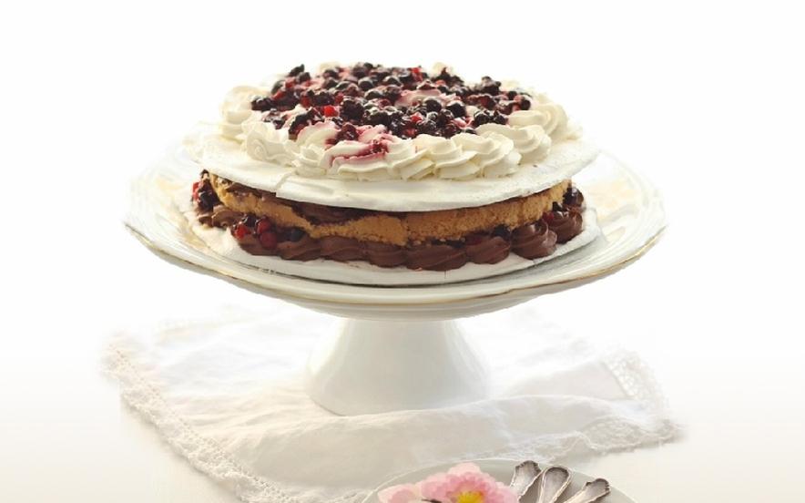 Torta meringata con cioccolato e frutti di bosco