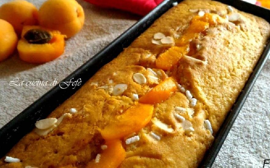 Plumcake integrale alle albicocche e mandorle