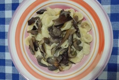 Orecchiette con purea di fave e funghi cantarelli