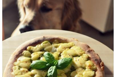 Pizza con pesto di zucchine e edamer